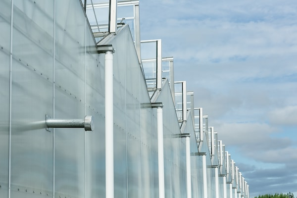 a row of greenhouses