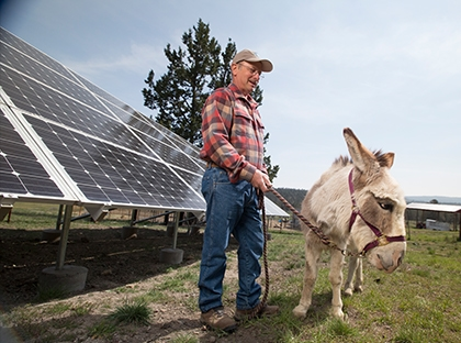 Man with mule in front of solar panels
